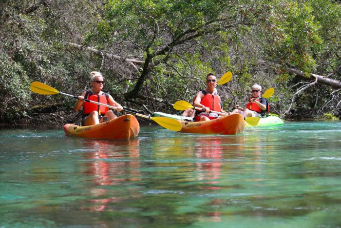 Family paddling down river