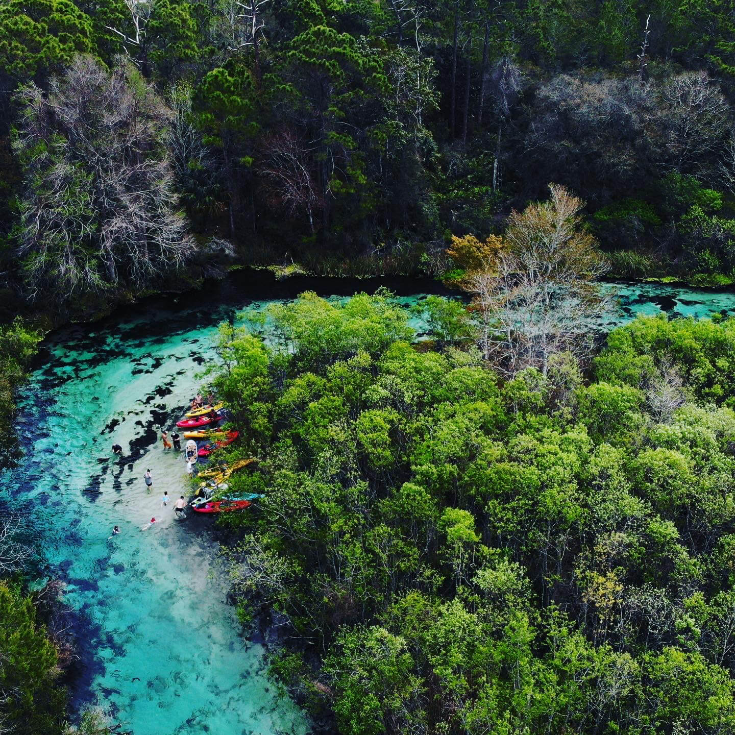 Overhead shot of river and group of kayaks